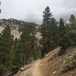 Mary Jane Falls Trail