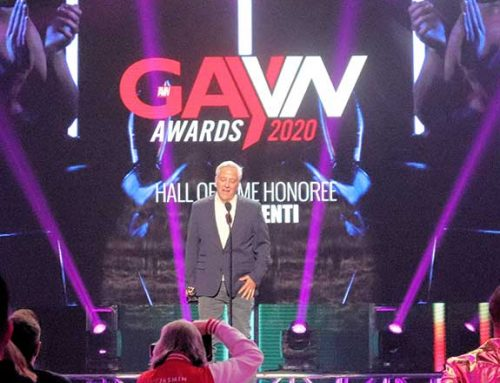 2020 GayVN Awards